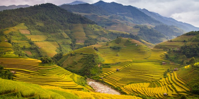 What To Do and See In Northern Vietnam