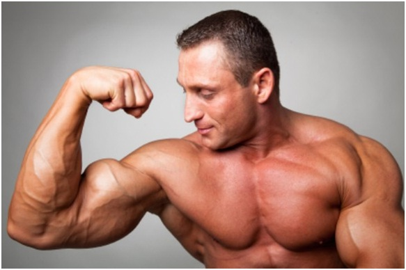 Getting The Best Natural Supplement For Having Healthy Muscle Building