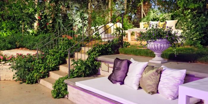 Add Fresh Notes and Vivid Tones To You Garden