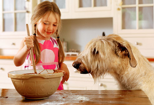 How To Avoid Dangerous Pet Treats