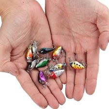 A Basic Guide To Fishing Lures