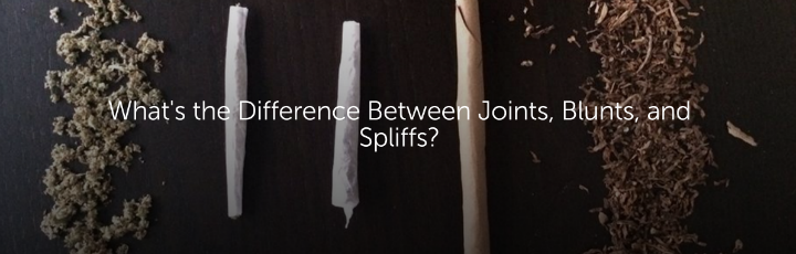 Difference Between Joints, Blunts, And Spliffs