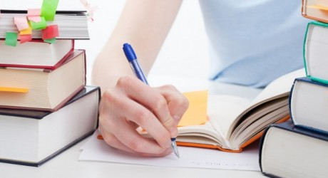 Assignment Mountains: A Best Essay Writing Company