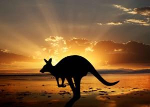 6 Best Places To Visit Australia